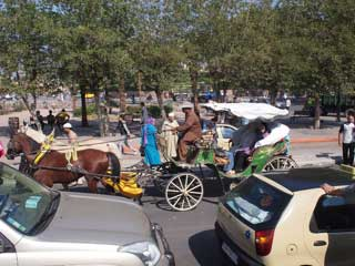 horses and carts  jostle with modrn cars