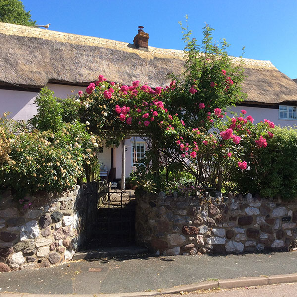 Cottage in Devon