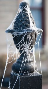 Web wrapped around finial